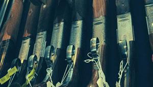 selection of guns on rack